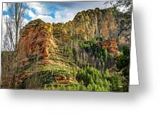 Rocks And Pines Greeting Card