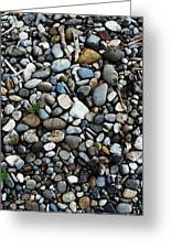 Rocks And Sticks On The Beach Greeting Card