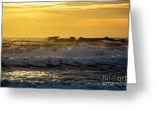 Rocks At Palm Beach At Sunrise Greeting Card