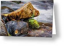 Rocks In The Creek Greeting Card