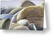 Rocks Greeting Card