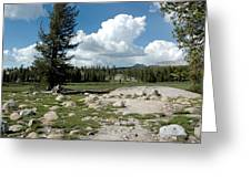 Rocks Of Tuolumne Meadows Greeting Card