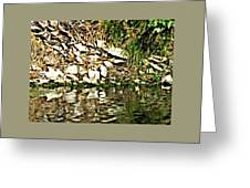 Rocks Reflecting Off Water Greeting Card