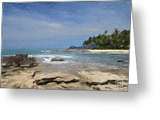 Rocks Trees And Ocean Greeting Card