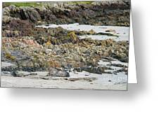 Rocky And Sandy Beach Greeting Card