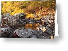 Rocky Creek II On Mill Mountain In The Missouri Ozarks Greeting Card