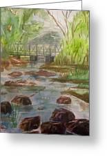 Rocky Creek In The Catskills  Greeting Card
