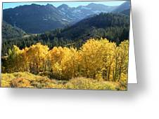 Rocky Mountain High Colorado - Landscape Photo Art Greeting Card