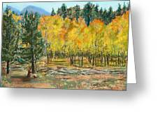 Rocky Mountain Siesta Greeting Card
