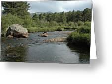 Rocky Mountain Stream Greeting Card