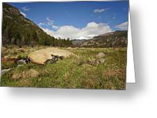 Rocky Mountain Valley Greeting Card