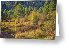 Rocky Mountains Autumn Greeting Card