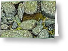 Rocky Nature Greeting Card