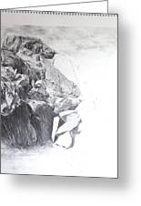 Rocky Outcrop In Snowdonia. Greeting Card