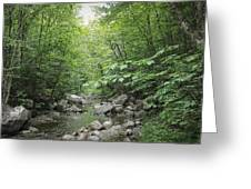 Rocky River In Green Greeting Card