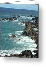Rocky Shore On St. Kitts Greeting Card