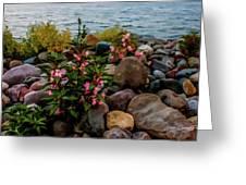 Rocky Shores Of Lake St. Clair- Michigan Greeting Card