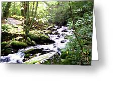 Rocky Stream 1 Greeting Card