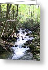 Rocky Stream 6 Greeting Card