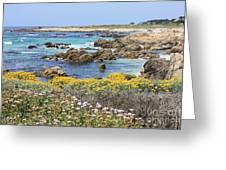 Rocky Surf With Wildflowers Greeting Card