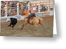 Rodeo 330 Greeting Card