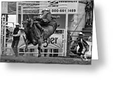 Rodeo Bull Riding 1 Greeting Card