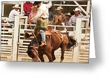 Rodeo Cowboy Riding A Wild Horse Greeting Card