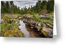 Rogue River Near Union Creek Greeting Card
