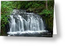 Rolley Lake Falls Dry Brushed Greeting Card