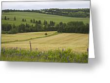 Rolling Farmland Stretches Greeting Card