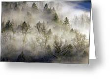 Rolling Fog In Sandy River Valley Greeting Card