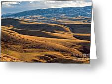 Rolling Foothills And The Bighorn Mountains Greeting Card