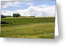 Rolling Green Hills With Trees Greeting Card