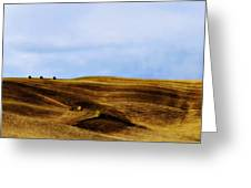 Rolling Hills Of Hay Greeting Card