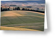 Rolling Hills Of The Palouse Greeting Card