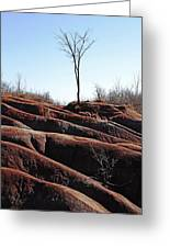 Rolling Red Badlands Greeting Card