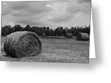 Rolls Of Hay Greeting Card by Southern Photo