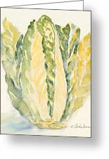 Romaine Greeting Card