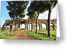 Roman Aqueducts Greeting Card