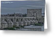 Roman Bridge In Cordoba II Greeting Card