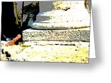 Roman Memories Greeting Card
