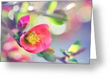 Romancing Spring I Greeting Card