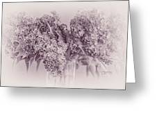 Romancing The Lilac Greeting Card
