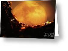 Romantic Ant Greeting Card