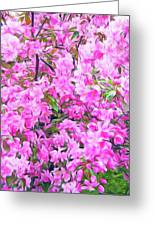 Romantic Skies Apple Blossoms  Greeting Card