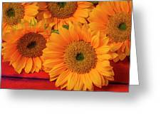 Romantic Sunflowers Greeting Card
