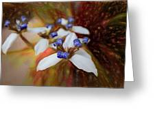 Romantic Textured Island Lilies  Greeting Card
