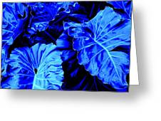 Romney Blue Greeting Card