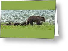 Romping By The Lake With Mama Bear Greeting Card