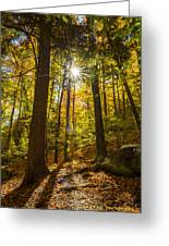 Rooster Comb Trail Greeting Card